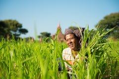 Birmanischer männlicher Landwirt Stockfotos