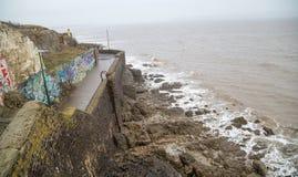 Birnbeck Pier, Weston-super-Mare royalty free stock photo