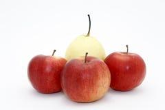 Birne in einer Umgebung der Äpfel Stockfotografie