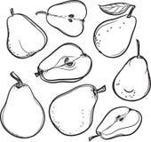 Birne Federzeichnung einer Birne stock abbildung