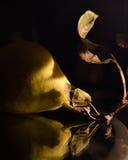 Birne und Blätter mit Reflexion im weichen Licht stockfoto