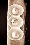 Birnen Stockbild