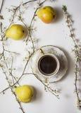 Birnen-Blüte mit Tasse Kaffee Stockfotografie