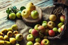 Birnen und Äpfel auf weißem Holztisch Stockfotografie