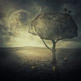 Birnenbaum auf KYZ-13 Lizenzfreies Stockfoto