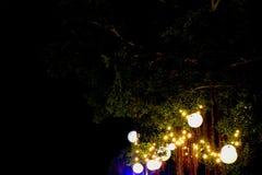 Birnendekoration des elektrischen Lichtes auf großem grünem Baum im Garten im Hochzeitsereignis angemessen Lizenzfreie Stockfotografie