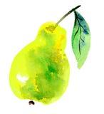 Birnenfrucht Stockfoto