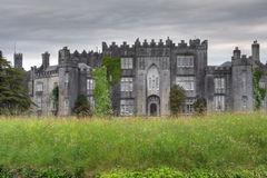 Birr Castle Demesne Stock Images
