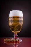 Birra 1 Immagine Stock