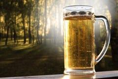 Birra 2 dell'oro Fotografie Stock Libere da Diritti