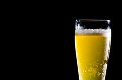 Birra fotografia stock