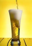 Birra Immagine Stock
