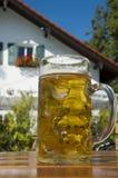 Birra bavarese fotografia stock libera da diritti