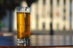 Birra chiara fotografie stock
