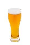 Birra chiara in un vetro Fotografie Stock