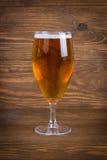 Birra chiara in vetro Fotografie Stock Libere da Diritti