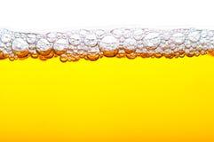 Birra con gomma piuma Fotografie Stock Libere da Diritti
