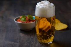 Birra con i nacho e la salsa immagine stock libera da diritti