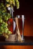Birra con il luppolo della fabbrica di birra Immagini Stock Libere da Diritti