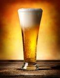 Birra con le bolle Fotografia Stock Libera da Diritti