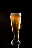 Birra con schiuma fotografie stock