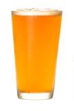 Birra del mestiere su bianco fotografia stock libera da diritti