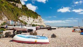 Birra Devon England Regno Unito immagini stock libere da diritti
