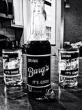 Birra di radice di Barqs Fotografie Stock Libere da Diritti