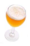 Birra di recente versata Immagini Stock Libere da Diritti