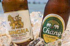 Birra di Singha e di Chang sulla spiaggia immagine stock