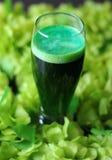 Birra di verde di giorno della st Patrick Fotografie Stock Libere da Diritti