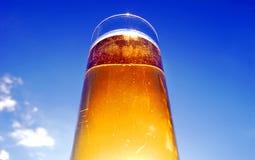 Birra di vetro Immagine Stock Libera da Diritti