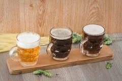 Birra di volo Berr per avere un sapore fotografie stock libere da diritti