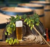 Birra e coni di luppolo Immagini Stock Libere da Diritti