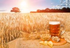 Birra e spuntini sul giacimento di grano del fondo Immagine Stock