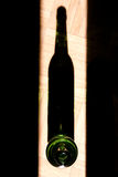 Birra ed ombra Fotografia Stock
