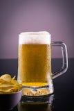 Birra fredda con i chip Fotografie Stock Libere da Diritti