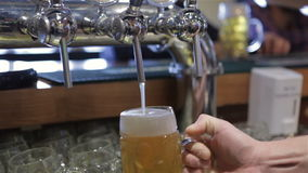 Birra fresca di versamento video d archivio
