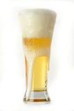 Birra gelida immagine stock