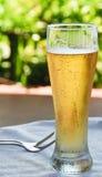 Birra ghiacciata. Immagini Stock Libere da Diritti