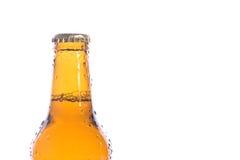 Birra isolata fresca Immagine Stock