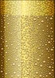 Birra leggera Fotografie Stock Libere da Diritti
