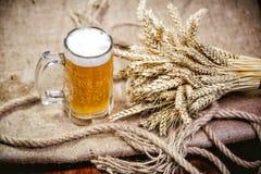 Birra leggera del grano e un mazzo di grano Immagine Stock Libera da Diritti