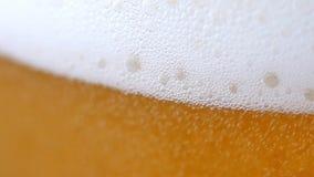 Birra leggera fredda in un vetro stock footage