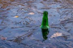 Birra molto fredda Fotografia Stock