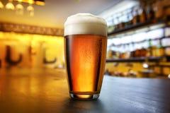 Birra nel pub Fotografia Stock