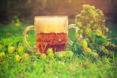 Birra piena dei coni di luppolo dei boccali con coperchio Immagine Stock Libera da Diritti