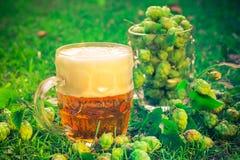 Birra piena dei coni di luppolo dei boccali con coperchio Fotografie Stock