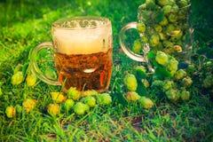 Birra piena dei coni di luppolo dei boccali con coperchio Fotografia Stock