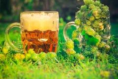 Birra piena dei coni di luppolo dei boccali con coperchio Immagini Stock Libere da Diritti